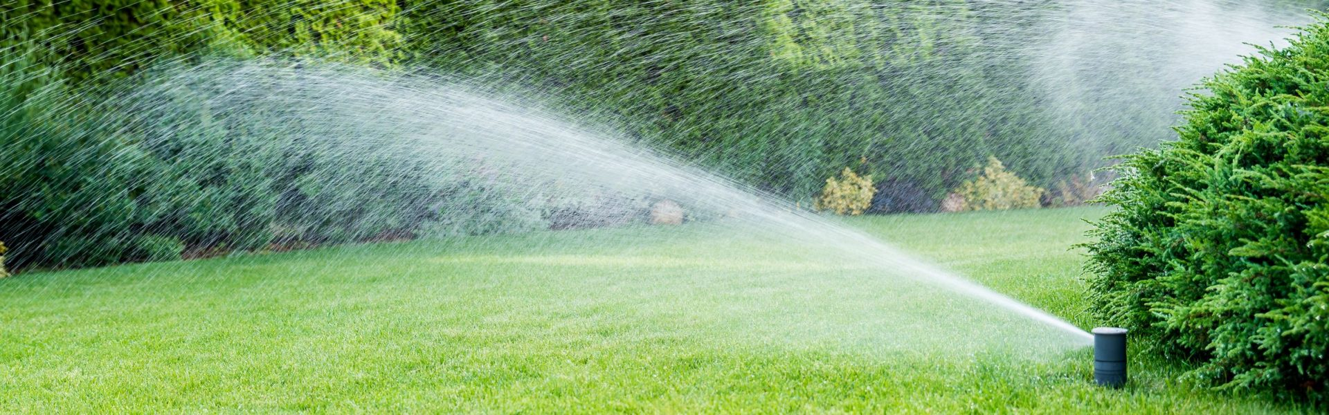 The Hollistic Aproach To Ideal Sprinkler System